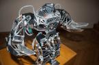 Roboty naszych czytelników