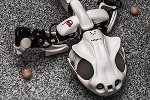 Salamandra jak żywa – nowy robot od EPFL