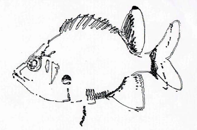 Jeden z przykładowych rysunków wykonanych ploterem.