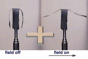 Zastosowanie nanocząstek metali w miękkiej robotyce