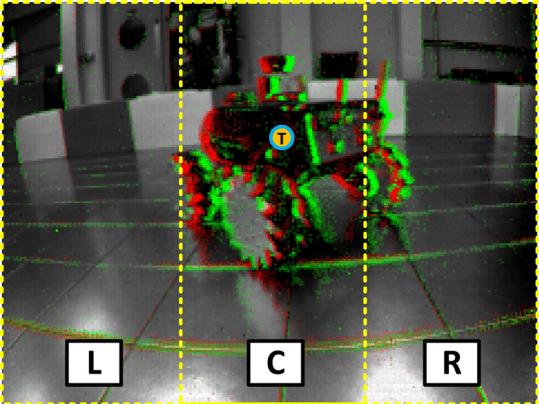 Obraz widziany przez robota-drapieżnika.