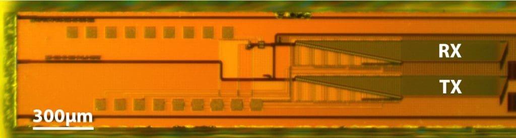 Mikrofotografia lidaru.