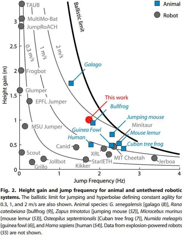Wysokość i częstotliwość skoków robotów i zwierząt (m.in. galago i człowieka). Salto plasuje się na poziomie żaby ryczącej.