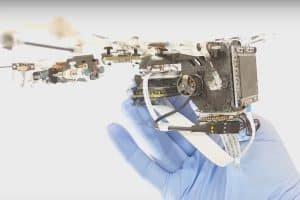 Bat Bot, czyli robot ze skrzydłami nietoperza