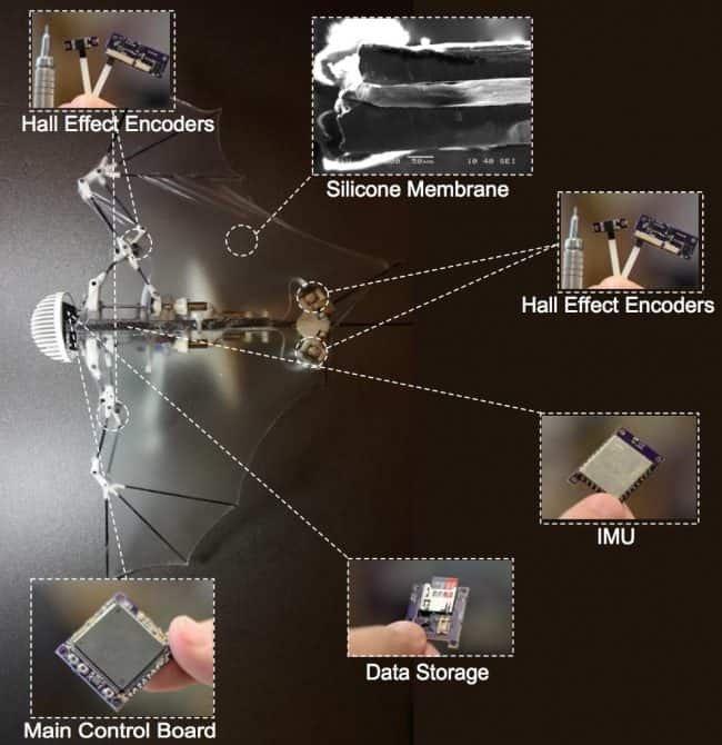 Budowa Bat Bota: główny kontroler, nośnik danych, IMU, enkodery magnetyczne i membrana.