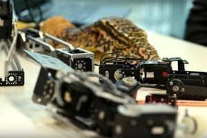 Roboty-szpiedzy wśród prawdziwych gadów