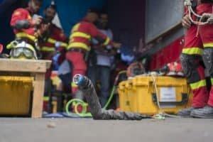 Roboty-węże przeszukały gruzy po trzęsieniu ziemi!
