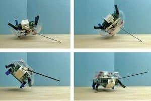 Robotyczny karaluch błyskawicznie podnosi się po upadku