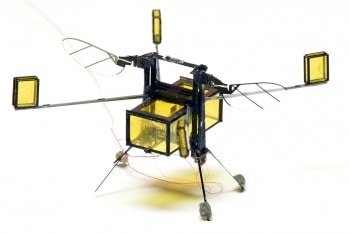 Sukces po 5 latach badań: nowy robo-insekt z Harvardu