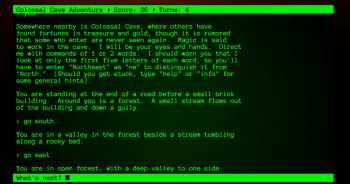 Przykładowy ekran z gry tekstowej