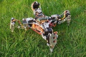 Robot kroczący X-walker