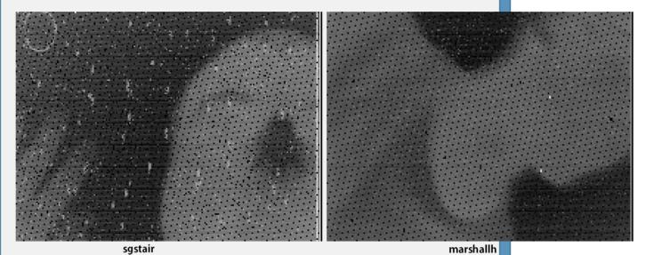Przechwycony obraz RAW z kamery Seek Thermal. Źródło: https://www.eevblog.com/forum/thermal-im[...]00/