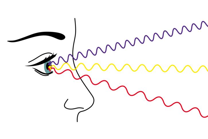 Fale świetlne docierające do ludzkiego oka