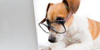 Kurs STM32L4 – #5 – taktowanie układu, RTC, watchdog, quiz