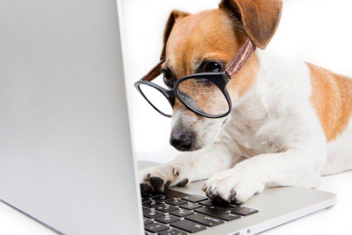 Watchdog to niezależny moduł, który pilnuje czy nasz układ działa poprawnie