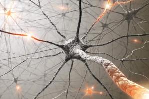 Sieci neuronowe - opis działania sztucznych sieci neuronowych
