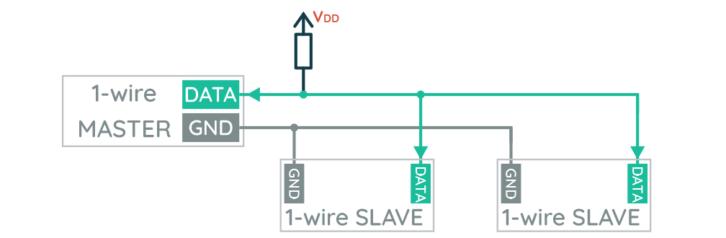 Schemat podłączenia dwóch urządzeń podrzędnych do wspólnej magistrali 1-wire